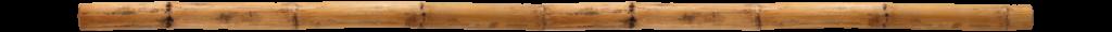 Teilerbild: Bambus